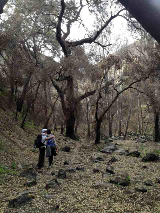 Hike to Nowhere